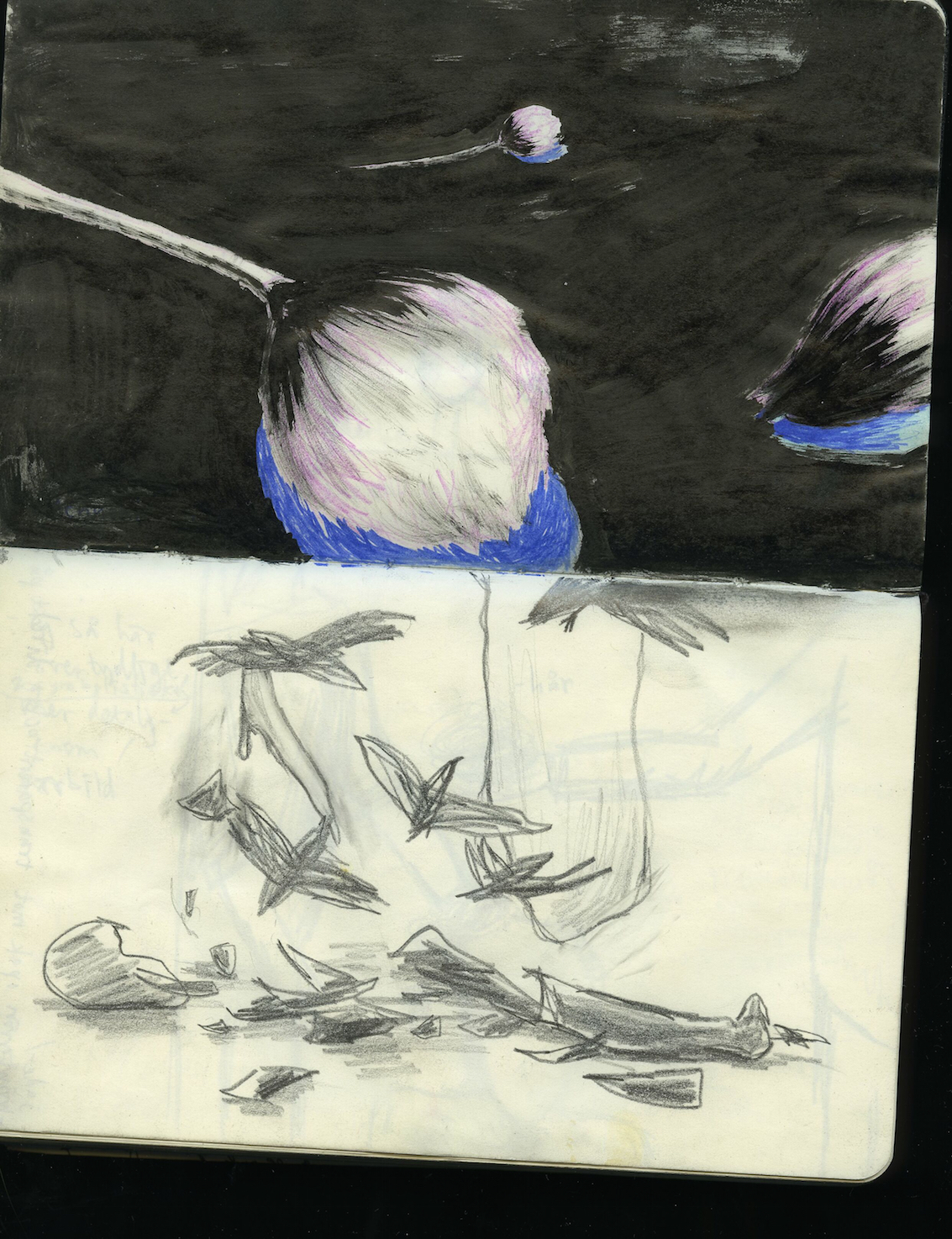 teckningar1